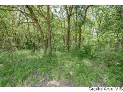 Taylorville Residential Lots & Land For Sale: 1069 N 1150 East Rd