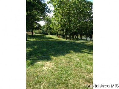 Taylorville Residential Lots & Land For Sale: 71 Lake Vista Drive