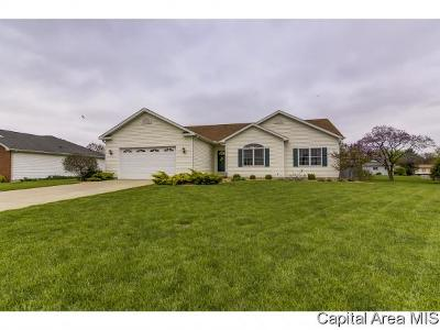 Pleasant Plains Single Family Home Pending Continue to Show: 105 Willow Ln