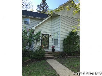 Virden Single Family Home For Sale: 331 S Finis St
