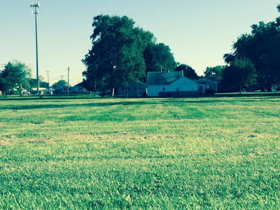 Vermilion County Residential Lots & Land For Sale: King St.