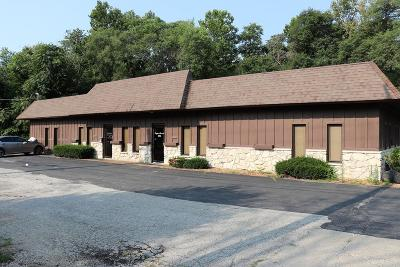 Vermilion County Commercial For Sale: 119 S Gilbert