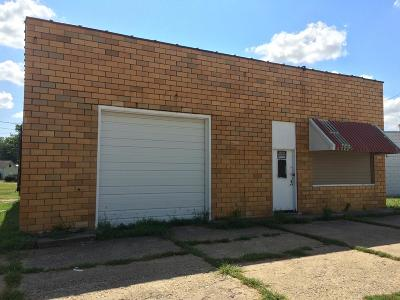 Vermilion County Commercial For Sale: 101 E North