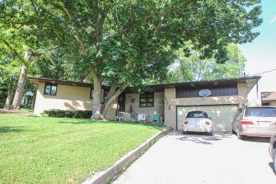 Danville Single Family Home For Sale: 447 S Kansas Avenue