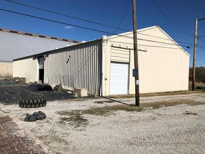 Vermilion County Commercial For Sale: 444 Van Buren