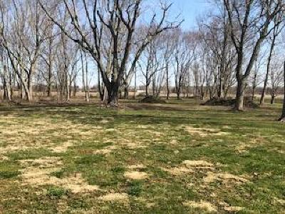 Vermilion County Residential Lots & Land For Sale: 2131 Batestown