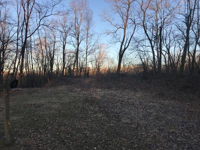 Vermilion County Residential Lots & Land For Sale: Amanda's Point