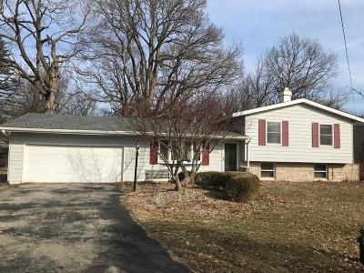 Vermilion County Single Family Home For Sale: 208 Maple