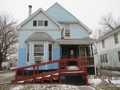 Vermilion County Single Family Home For Sale: 42 Lake