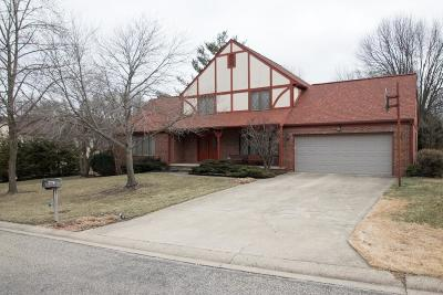 Vermilion County Single Family Home For Sale: 1407 Harrison Hills Drive
