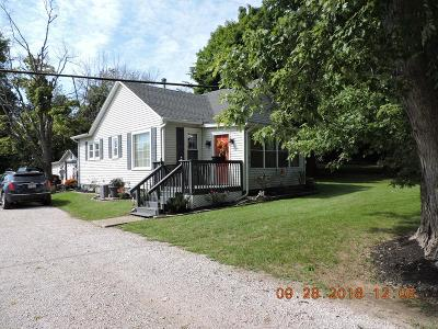 Vermilion County Single Family Home For Sale: 21780 Denmark