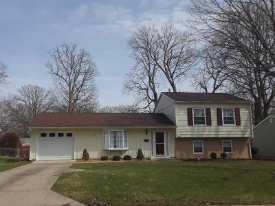 Vermilion County Single Family Home For Sale: 1419 Grant
