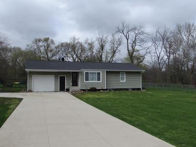 Vermilion County Single Family Home For Sale: 17199 E 3020