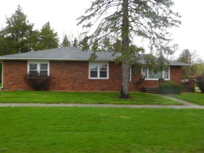 Vermilion County Single Family Home For Sale: 216 E McKibben St