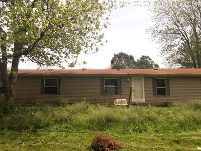 Vermilion County Single Family Home For Sale: 707 English