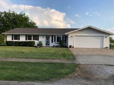 Vermilion County Single Family Home For Sale: 104 Jones
