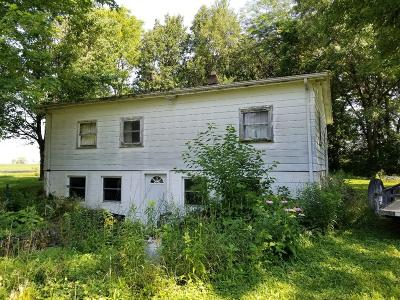 Vermilion County Single Family Home For Sale: 11247 E 420 N