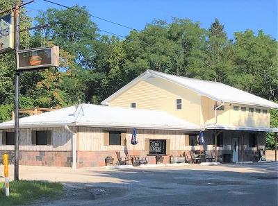 Vermilion County Commercial For Sale: 1902 W Williams