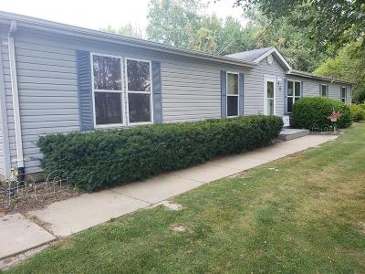 Vermilion County Single Family Home For Sale: 13 Penny Lane