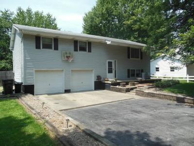 Warrensburg Single Family Home For Sale: 345 S Durfee St