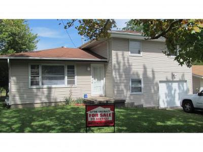 Mt. Zion Single Family Home For Sale: 1120 Meadowview Dr
