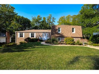 Mt. Zion Single Family Home For Sale: 704 Antler Drive