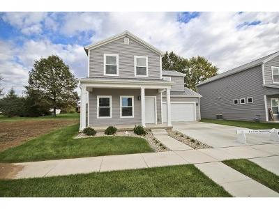 Mt. Zion Single Family Home For Sale: 1366 Mt. Zion Parkway