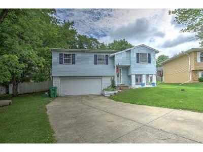 Mt. Zion Single Family Home For Sale: 580 Fawn Ct.
