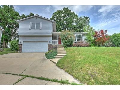 Decatur Single Family Home For Sale: 4636 Havenwood Ct
