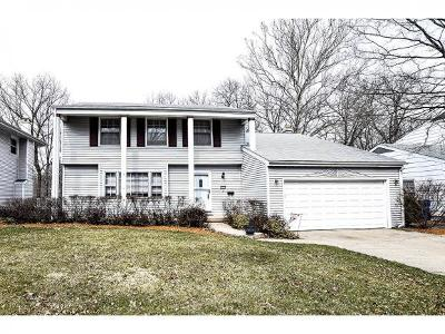 Decatur Single Family Home For Sale: 123 Point Bluff