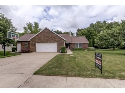Mt. Zion Single Family Home For Sale: 330 E Ashland Ave