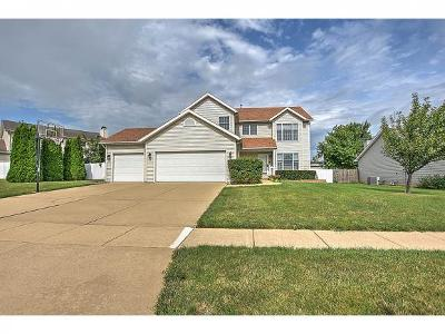 Forsyth Single Family Home For Sale: 361 Phillip Circle