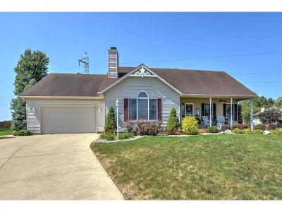 Decatur Single Family Home For Sale: 781 Waterford Lane