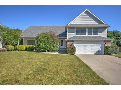 Forsyth Single Family Home For Sale: 768 Schroll Ct