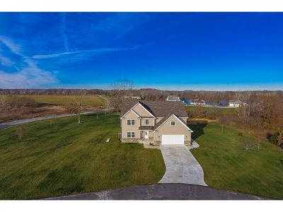 Mt. Zion Single Family Home For Sale: 4785 Tara Way