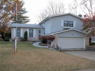 Decatur Single Family Home For Sale: 465 Shadow Ln