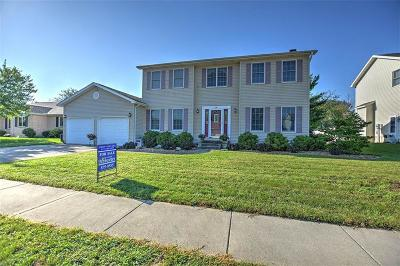 Mt. Zion Single Family Home For Sale: 20 Blakeridge Place