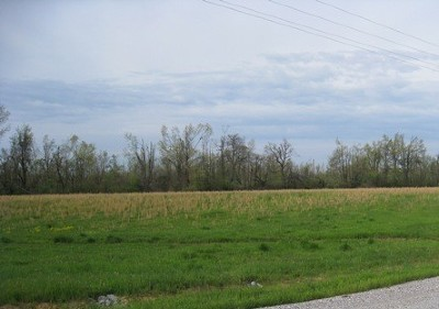 Metropolis Residential Lots & Land For Sale