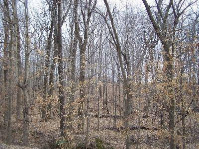 Williamson County Residential Lots & Land For Sale