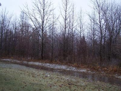 Williamson County Residential Lots & Land For Sale: Tbd Adams Drive