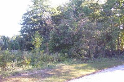 Murphysboro Residential Lots & Land For Sale: Lot 7 Lake Shore Drive