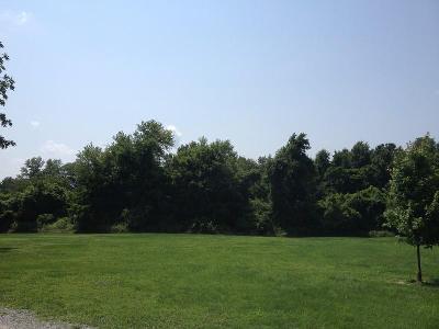 Murphysboro Residential Lots & Land For Sale: Porter