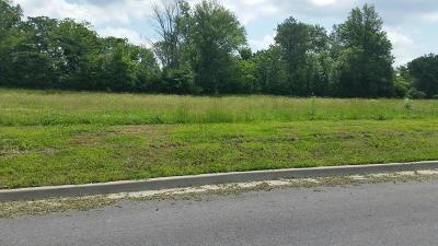 Jackson County Residential Lots & Land For Sale: Lot 3 Financial Park