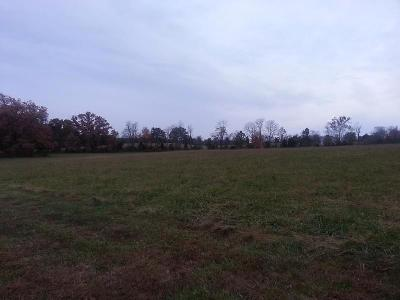 Pope County Residential Lots & Land For Sale: Old Home Road