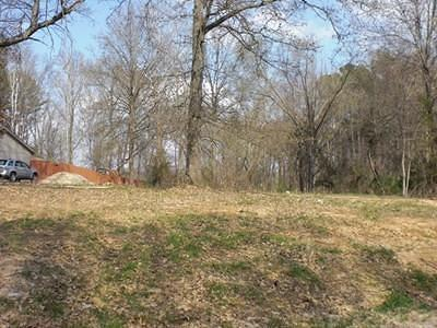 Carterville Residential Lots & Land For Sale: Lot 8 Whitecotton Drive