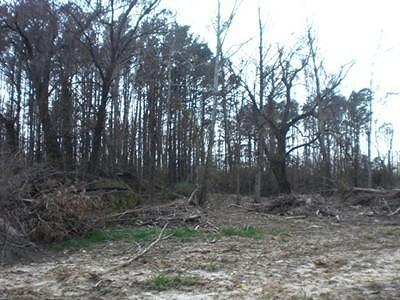 Carterville Residential Lots & Land For Sale: Lot 17 Whitecotton Drive