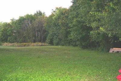 Murphysboro Residential Lots & Land For Sale: Lot 4 Douglas Drive