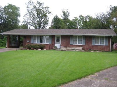 Carbondale Single Family Home For Sale: 503 S Dixon
