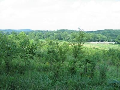 Pope County Residential Lots & Land For Sale: Rr 1 State Rt 34