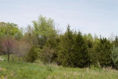 Pittsburg Residential Lots & Land For Sale: Squires Point #17&18